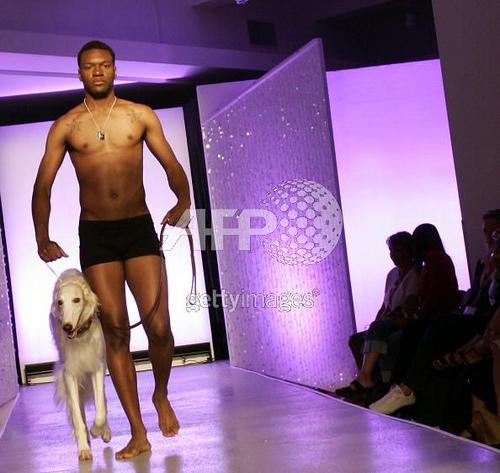 dog fashion show 1